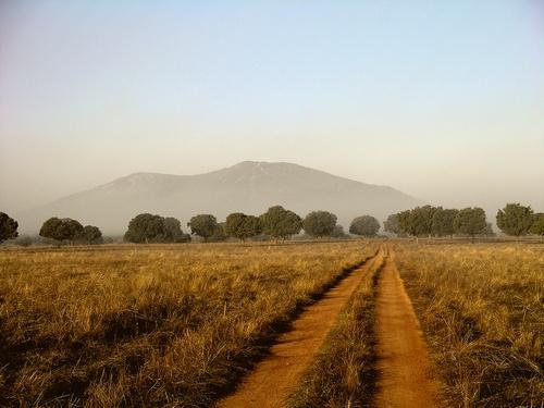 paisaje_rincondecabaneros